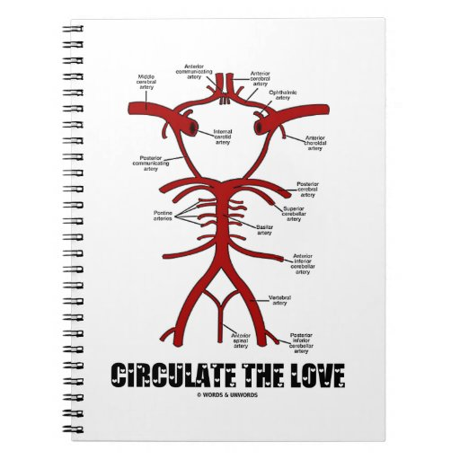 Circulate The Love (Circle Of Willis) Spiral Note Books