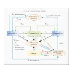 Circulation Diagram in Macroeconomics Canvas Prints