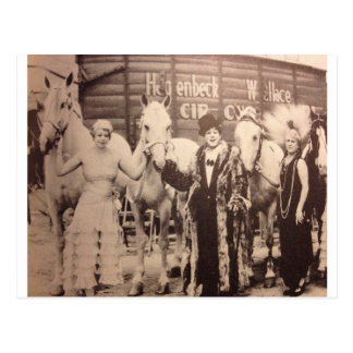 Circus Performers and White Horses Postcard