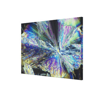 Citric Acid Crystals in Polarized Light Stretched Canvas Print