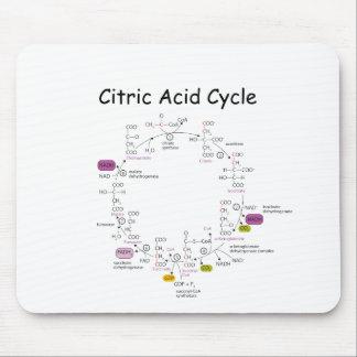 citric acid cycle 마우스패드