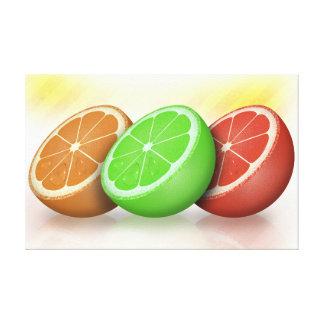 Citrus fruits artistic illustration stretched canvas prints