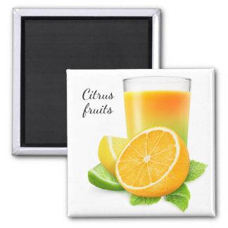 Citrus fruits juice square magnet