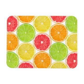 Citrus fruits pattern magnet