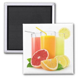 Citrus juices square magnet