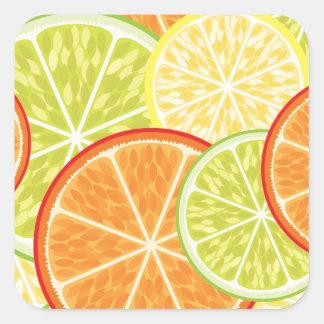 citrus square sticker