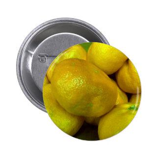 Citrus Squash Pinback Button