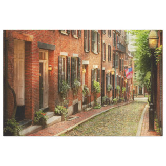 City - Boston MA - Acorn Street Tissue Paper