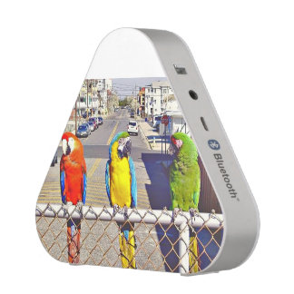 City Macaw Parrot Pet Bird Branch Animal Tree Leaf