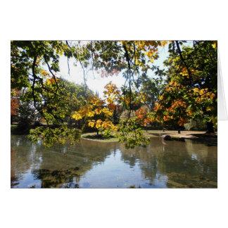 City Pond Card