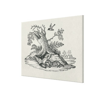 Civet with Cockerel from 'History of Quadrupeds' Gallery Wrap Canvas