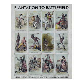 CIVIL WAR: from plantation to battlefield Poster