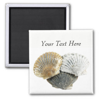 Clam Shells Personalized Magnets