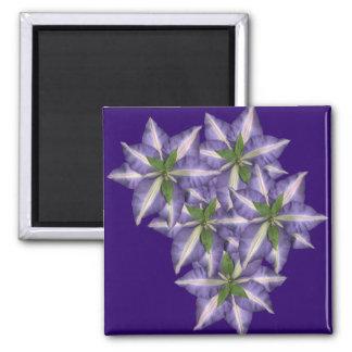 Clamatis 3 square magnet