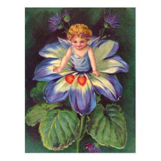 Clapsaddle: Flower Cherub Aster Postcard