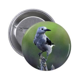 Clark's nutcracker 6 cm round badge