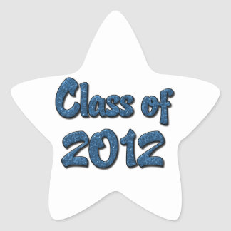 Class of 2012 - Blue Star Stickers