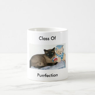 Class Of Purrfection Mug