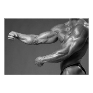 Classic Bodybuilding Gym Wall Arm Poster