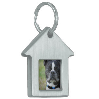 Classic Boston Terrier Dog Pet ID Tag