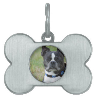 Classic Boston Terrier Dog Pet Name Tag