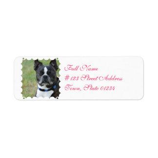 Classic Boston Terrier Dog Return Address Label