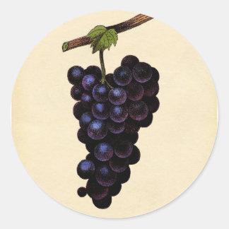 Classic Botanical Print - Red Grape Round Sticker