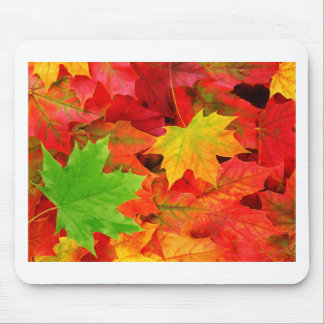 Classic Colored Autumn Fall Leaf Print Mouse Pad