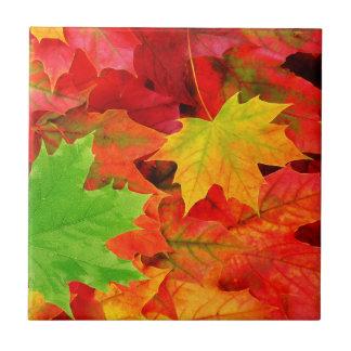 Classic Colored Autumn Fall Leaf Print Small Square Tile