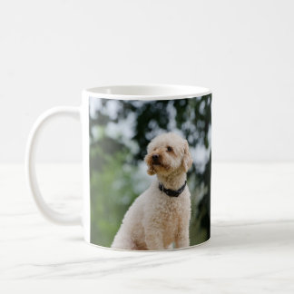 Classic cup white Poodle