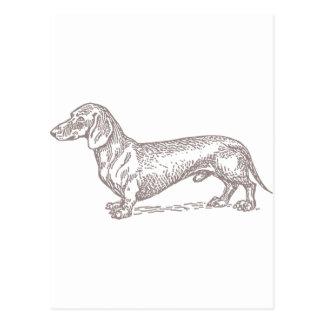 Classic Doxie - Grey Postcard