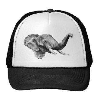 Classic Elephant Cap