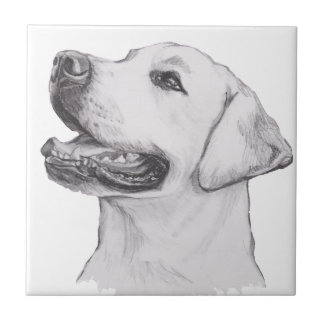 Classic Labrador Retriever Dog profile Drawing Tile