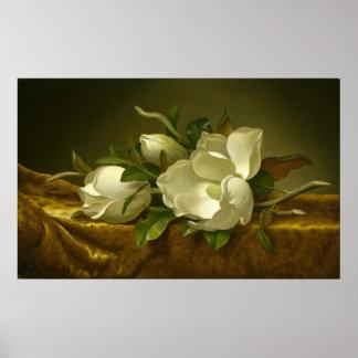 Classic Magnolias Poster