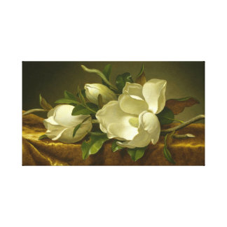 Classic Magnolias Stretched Canvas Art