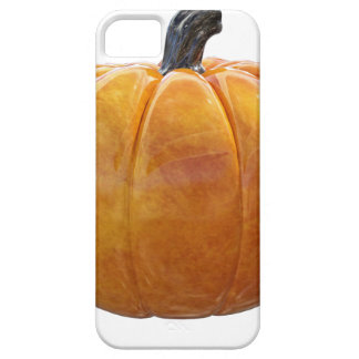 Classic Orange Pumpkin iPhone 5 Case
