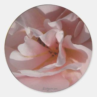 Classic Pink Rose Wedding Envelope Seals Round Sticker