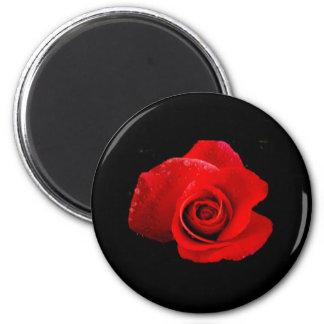 Classic Red Rose on Black 6 Cm Round Magnet