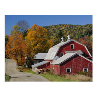 Classic rural barn and road, White Mountain Postcard