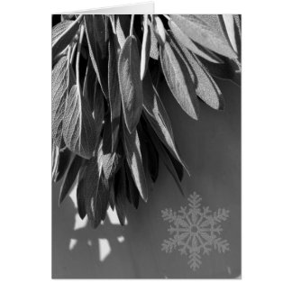 Classic snow flake  Sage - black and white Card