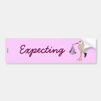 Classic Stork (Pink) 2 (Baby Shower) Bumper Sticker