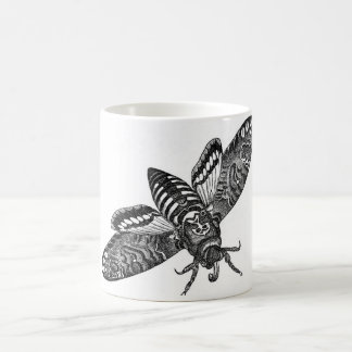 Classic Zoological Etching - Death's Head Moth Coffee Mug