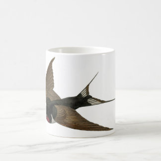 Classic Zoological Etching - Swallow Coffee Mug