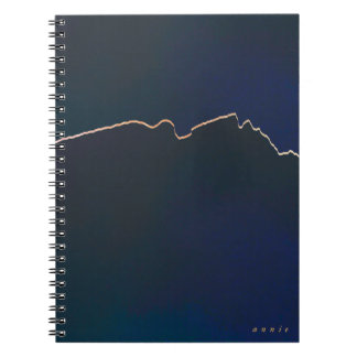Classy Navy and Gold Spiral Notebook
