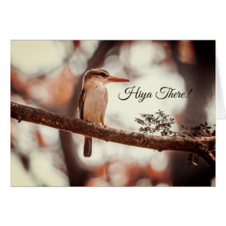 Classy, Sassy and Fabulous Christmas Card