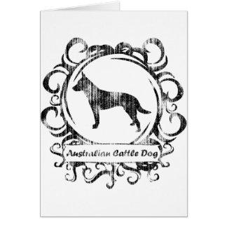 Classy Weathered Australian Cattle Dog Card