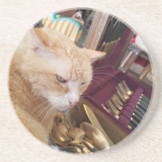 Claude Coaster