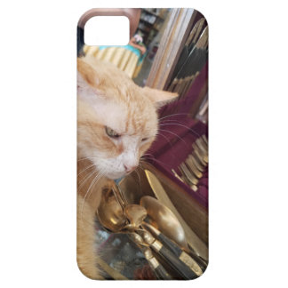 Claude iPhone 5 Cases