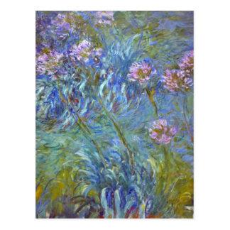 Claude Monet Agapanthus Fine Art Floral GalleryHD Postcard