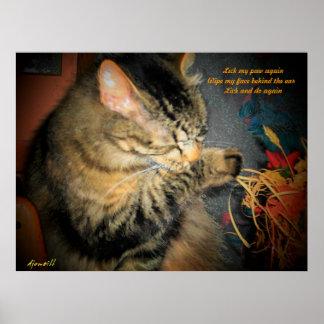clean cat haiku poster